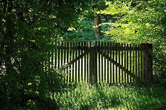 Gestaltung des eigenen Gartens. Foto: Antranias / pixabay.com