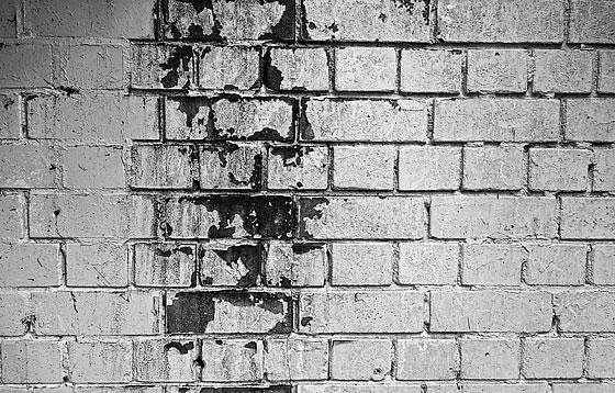 Schimmel am Bau – Was kann man tun? Foto: pixabay.com