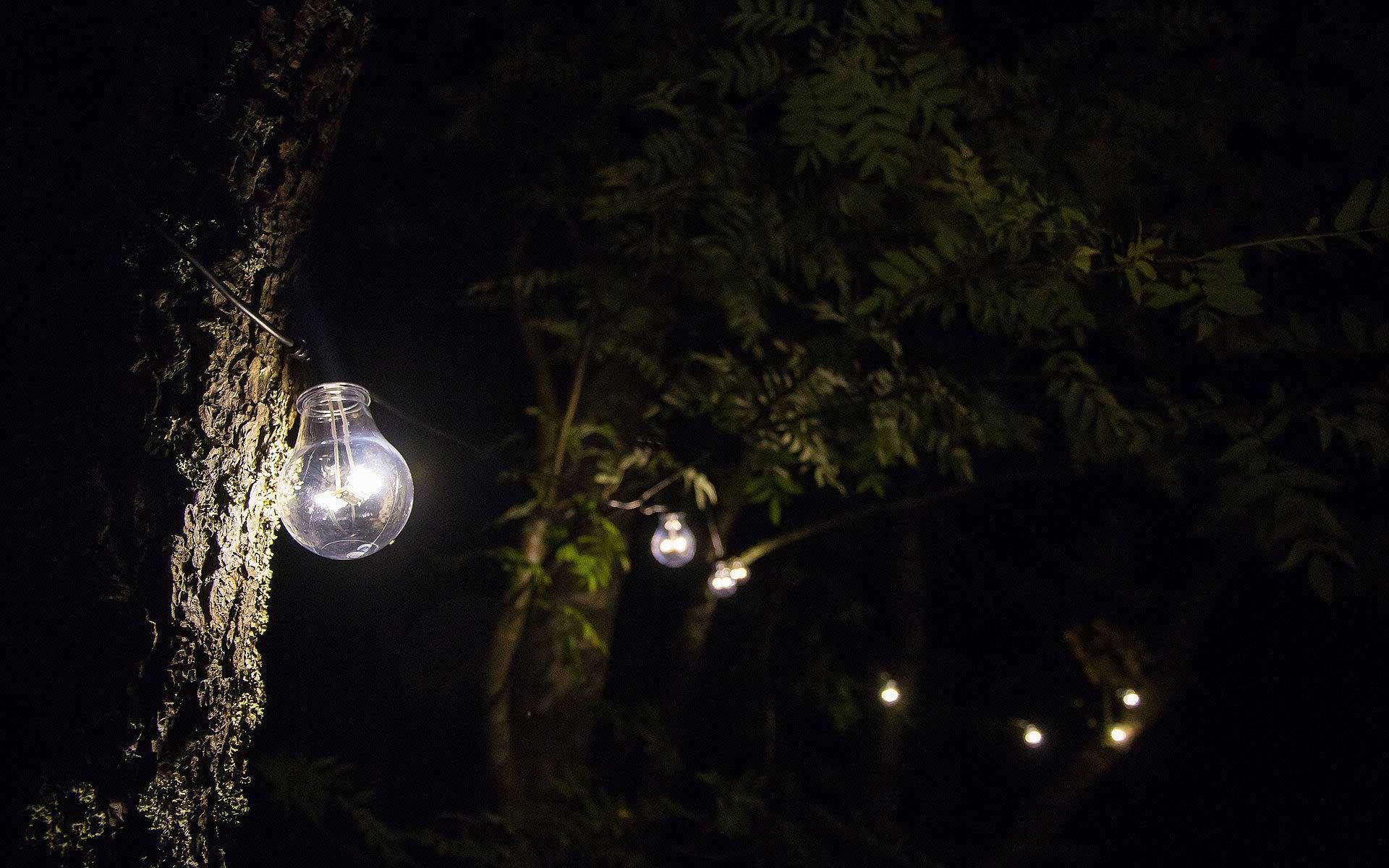 Mit Beleuchtung den Garten verschönern - Foto: pixabay.com