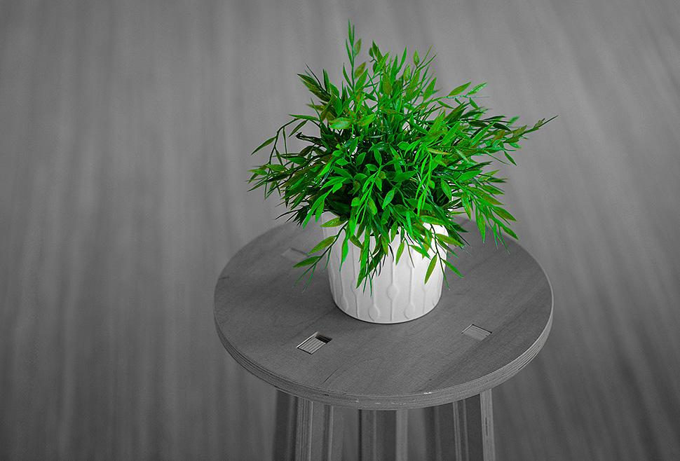 Mit Holz & Pflanzen das Raumklima verbessern. Foto: pixabay.com
