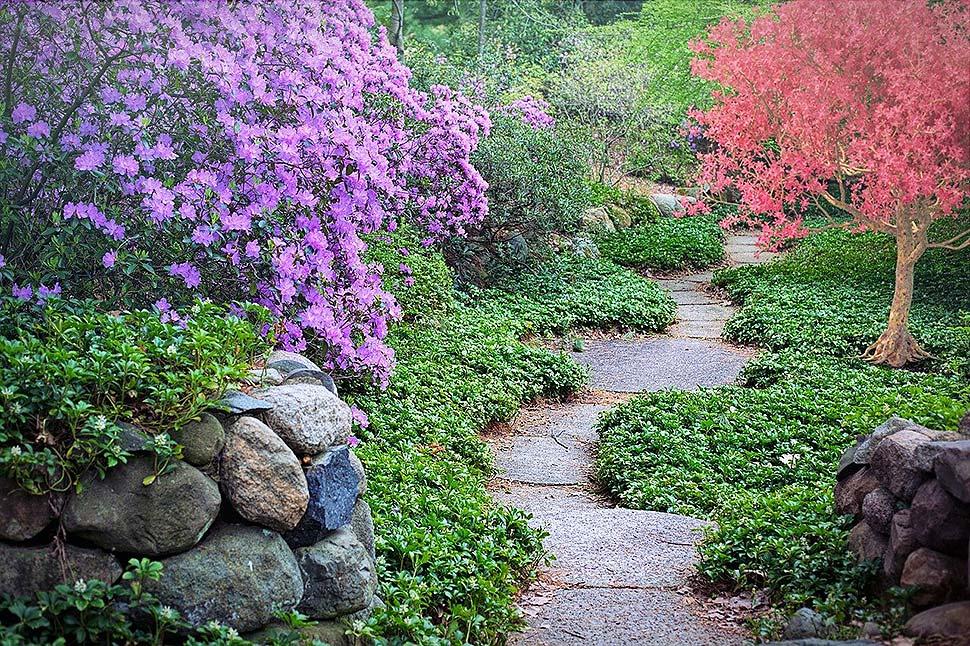 So gestaltet man einen optisch ansprechenden Garten. Foto: pixabay.com