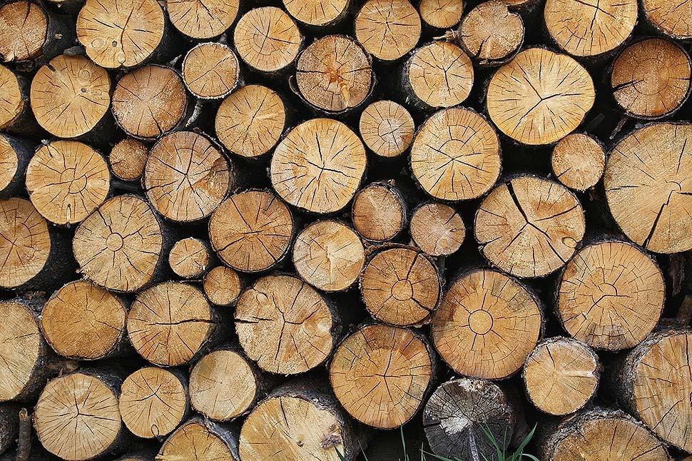 Kombination verschiedener Holzarten: Harmonie oder Stilmix mit Pufferzonen. Foto: pixabay,com