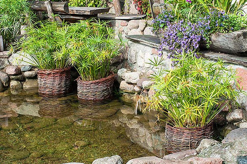 Einen Teich im eigenen Garten anlegen. Foto: iStock.com / katkov