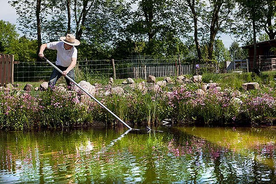 Einen Teich im eigenen Garten anlegen. Foto: iStock.com / purple_queue