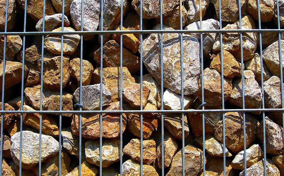 Welcher Zaun ist der Richtige für mich? Foto: pixabay.com