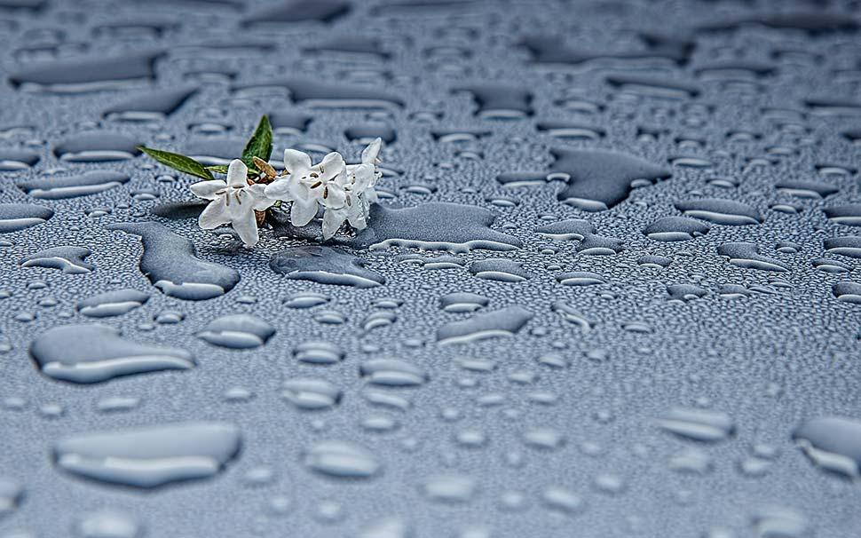 Regenwassernutzung im Haushalt. Foto: pixabay.com